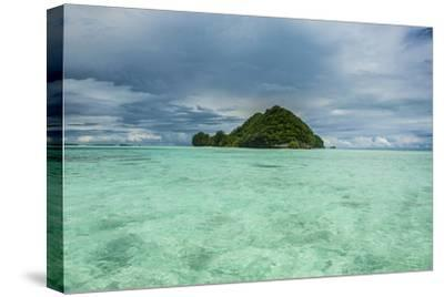 Little Island in the Rock Islands, Palau, Central Pacific-Michael Runkel-Stretched Canvas Print