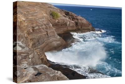 USA, Hawaii, Oahu, Honolulu. Water Shoots from Spitting Cave at Kawaihoa Point-Charles Crust-Stretched Canvas Print