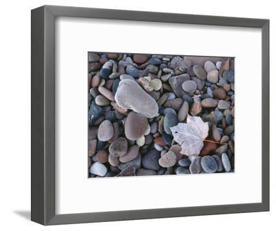 Michigan, Porcupine Mountains Wilderness State Park-John Barger-Framed Premium Photographic Print