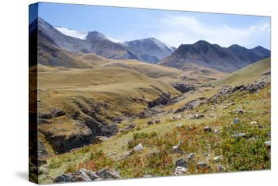 Mongolia, Bayan Logia Province, Gashuun Suhayt. River Valley-Emily Wilson-Stretched Canvas Print