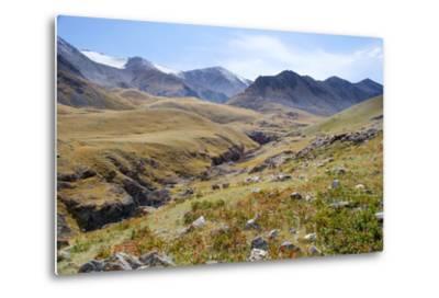 Mongolia, Bayan Logia Province, Gashuun Suhayt. River Valley-Emily Wilson-Metal Print