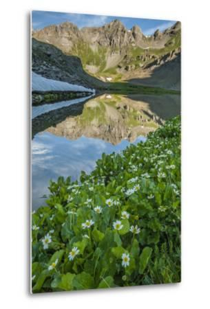 USA, Colorado, San Juan Mountains. Clear Lake Reflection and Marigolds-Jaynes Gallery-Metal Print