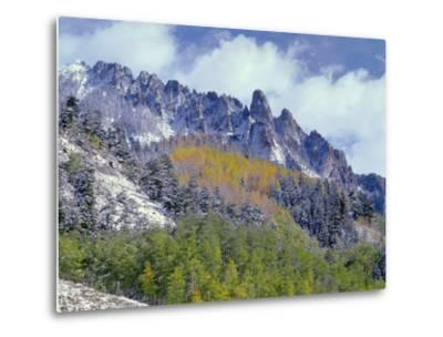 USA, Colorado, Uncompahgre National Forest, Fall Snow on Ophir Needles Above Aspen and Conifers-John Barger-Metal Print