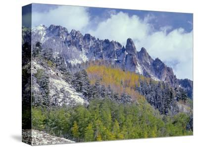 USA, Colorado, Uncompahgre National Forest, Fall Snow on Ophir Needles Above Aspen and Conifers-John Barger-Stretched Canvas Print