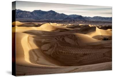 USA, California, Death Valley National Park, Mesquite Flat Dunes after Rain-Ann Collins-Stretched Canvas Print