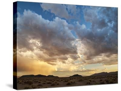 USA, California, Mojave National Preserve. Desert Rain Squall at Sunset-Ann Collins-Stretched Canvas Print