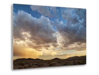 USA, California, Mojave National Preserve. Desert Rain Squall at Sunset-Ann Collins-Metal Print