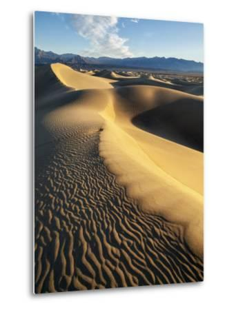 USA, California, Death Valley National Park. Early Morning Sun Hits Mesquite Flat Dunes-Ann Collins-Metal Print