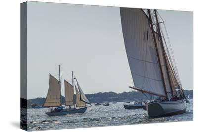 USA, Massachusetts, Cape Ann, Gloucester, America's Oldest Seaport, Annual Schooner Festival-Walter Bibikow-Stretched Canvas Print