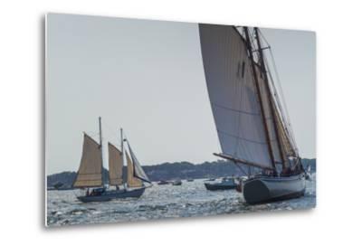 USA, Massachusetts, Cape Ann, Gloucester, America's Oldest Seaport, Annual Schooner Festival-Walter Bibikow-Metal Print