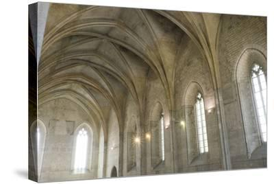 Southern France, Vaucluse, Provence, Avignon, Views in and around the Papal Palace-Emily Wilson-Stretched Canvas Print