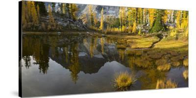 Washington, Mt. Stuart Reflects in a Tarn Near Horseshoe Lake, Alpine Lakes Wilderness. Panorama-Gary Luhm-Stretched Canvas Print