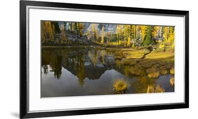 Washington, Mt. Stuart Reflects in a Tarn Near Horseshoe Lake, Alpine Lakes Wilderness. Panorama-Gary Luhm-Framed Premium Photographic Print