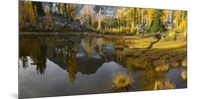 Washington, Mt. Stuart Reflects in a Tarn Near Horseshoe Lake, Alpine Lakes Wilderness. Panorama-Gary Luhm-Mounted Premium Photographic Print