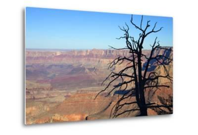 USA, Arizona, Grand Canyon. the Grand Canyon, View from the South Rim-Kymri Wilt-Metal Print