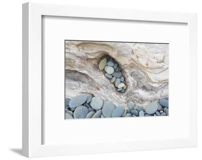 Washington, Olympic National Park. Beach Wood and Pebbles-Jaynes Gallery-Framed Premium Photographic Print