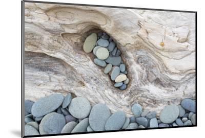Washington, Olympic National Park. Beach Wood and Pebbles-Jaynes Gallery-Mounted Premium Photographic Print