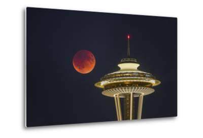 Two Image Composite to Account for Brightness of the Needle-Gary Luhm-Metal Print