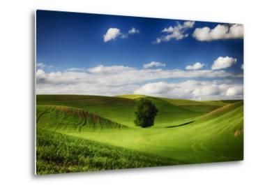 Washington, Colfax, Rolling Wheat Fields with Lone Tree-Terry Eggers-Metal Print