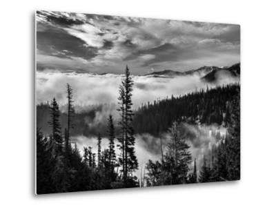 Washington, Olympic National Park. View Northeast from Road to Hurricane Ridge-Ann Collins-Metal Print