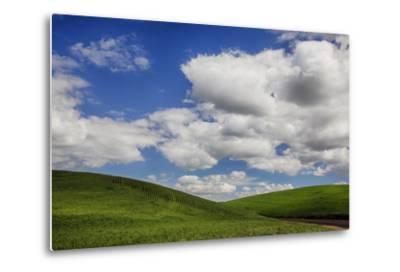Washington, Palouse Country, Backroad Through the Green Fields of Washington-Terry Eggers-Metal Print
