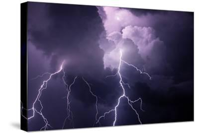 USA, Tennessee. Composite of Cloud-To-Cloud Lightning Bolts-Jaynes Gallery-Stretched Canvas Print