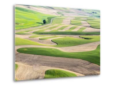 Washington, Whitman County. Aerial Photography in the Palouse Region of Eastern Washington-Julie Eggers-Metal Print