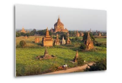 Traditional Horse and Cart Passing the Pagodas in Bagan (Pagan), Myanmar (Burma), Asia-Jordan Banks-Metal Print