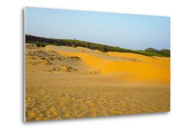 Red Sand Dunes at Mui Ne, Phan Thiet, Binh Thuan Province, Vietnam, Indochina, Southeast Asia, Asia-Jason Langley-Metal Print