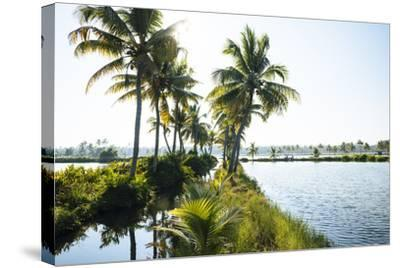 Backwaters Near North Paravoor, Kerala, India, South Asia-Ben Pipe-Stretched Canvas Print