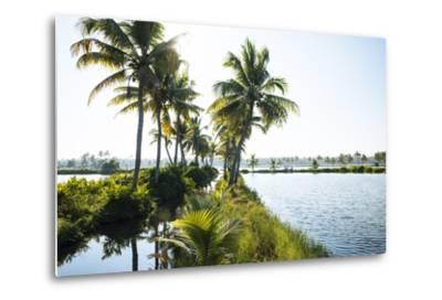 Backwaters Near North Paravoor, Kerala, India, South Asia-Ben Pipe-Metal Print
