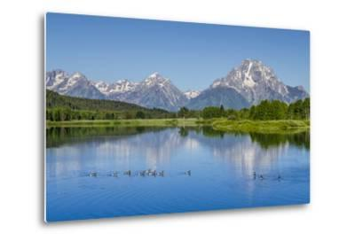 Small Lake in Grand Teton National Park, Wyoming, United States of America, North America-Michael DeFreitas-Metal Print