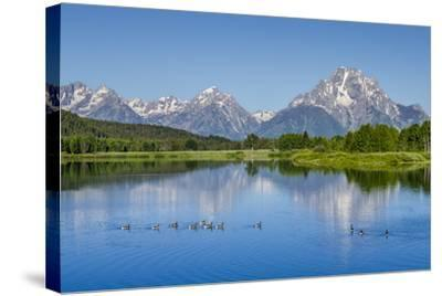Small Lake in Grand Teton National Park, Wyoming, United States of America, North America-Michael DeFreitas-Stretched Canvas Print