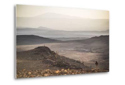 Trekking at Sunset in Cactus Valley (Los Cardones Ravine), Atacama Desert, North Chile-Matthew Williams-Ellis-Metal Print