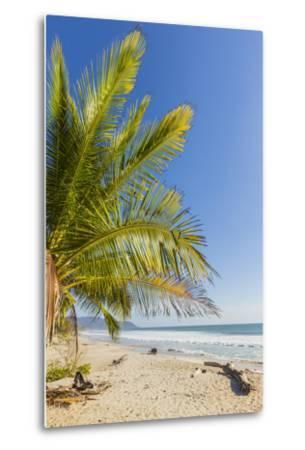 Palm Trees on This Beautiful Surf Beach Near Mal Pais, Santa Teresa, Costa Rica-Rob Francis-Metal Print