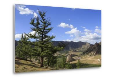 Elevated View Towards Turtle Rock and Distant Mountains, Mongolia-Eleanor Scriven-Metal Print