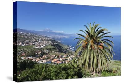 Orotava Valley to the North Coast and Puerto De La Cruz Und Den Teide, Canary Islands, Spain-Markus Lange-Stretched Canvas Print
