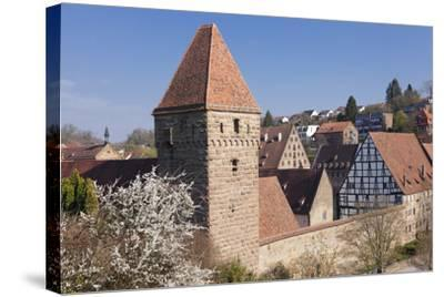 Haspelturm (Hexenturm) Tower, Kloster Maulbronn Abbey, Black Forest, Baden-Wurttemberg, Germany-Markus Lange-Stretched Canvas Print