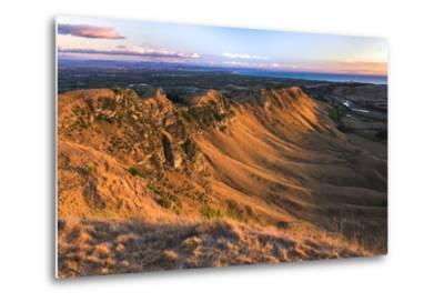 Te Mata Peak at Sunrise, Hastings Near Napier, Hawkes Bay Region, North Island, New Zealand-Matthew Williams-Ellis-Metal Print