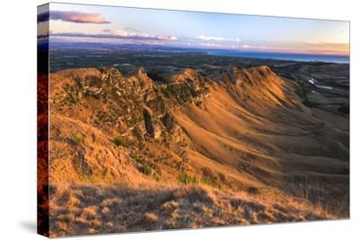 Te Mata Peak at Sunrise, Hastings Near Napier, Hawkes Bay Region, North Island, New Zealand-Matthew Williams-Ellis-Stretched Canvas Print