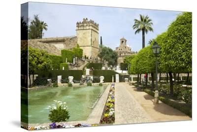 Gardens in Alcazar, Cordoba, Andalucia, Spain, Europe-Peter Barritt-Stretched Canvas Print