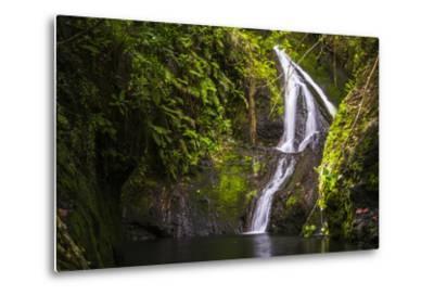 Wigmore's Waterfall, Rarotonga, Cook Islands, South Pacific, Pacific-Matthew Williams-Ellis-Metal Print