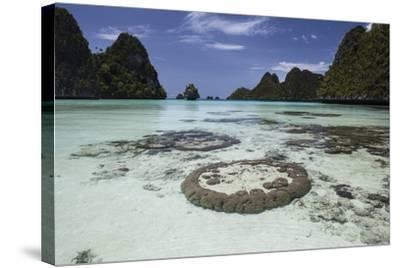 Limestone Islands Surround Corals in a Lagoon in Raja Ampat-Stocktrek Images-Stretched Canvas Print