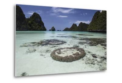 Limestone Islands Surround Corals in a Lagoon in Raja Ampat-Stocktrek Images-Metal Print