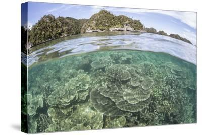 A Beautiful Coral Reef Grows Near a Set of Limestone Islands-Stocktrek Images-Stretched Canvas Print