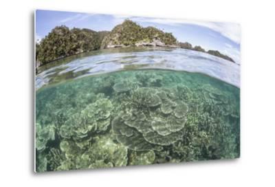 A Beautiful Coral Reef Grows Near a Set of Limestone Islands-Stocktrek Images-Metal Print