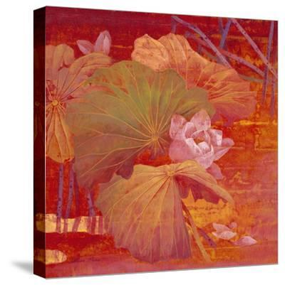 Red Illusion-Ailian Price-Stretched Canvas Print