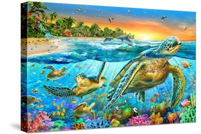 Underwater Turtles-Adrian Chesterman-Stretched Canvas Print