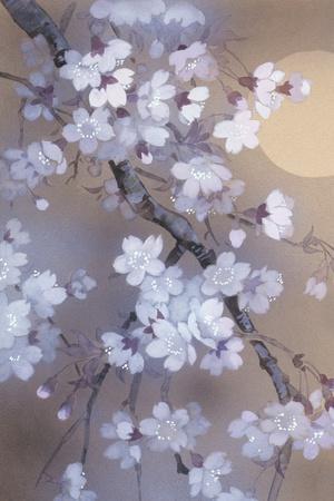 Yoi 12974 Crop 1-Haruyo Morita-Stretched Canvas Print