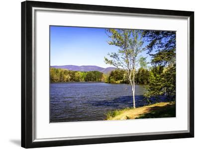 Beaver Creek-Alan Hausenflock-Framed Photographic Print